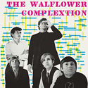 Walflower Complextion